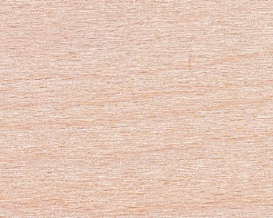 Hard Maple Wood Texture